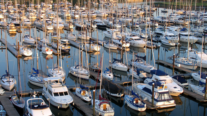 Boats at Swanwick Marina